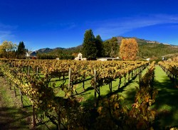 2017 Recherché Reserve Chardonnay - Easley Vineyard - Estate Bottled
